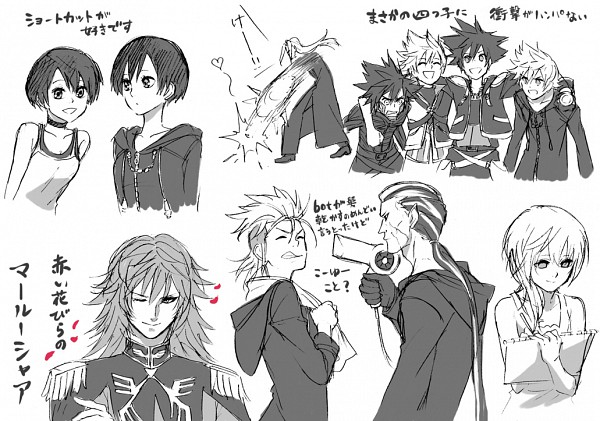 Tags: Anime, Symbols, Kingdom Hearts, Kingdom Hearts: Birth by Sleep, Kingdom Hearts 358/2 Days, Kingdom Hearts II, Xion, Vexen, Roxas, Ventus, Xigbar, Naminé, Marluxia