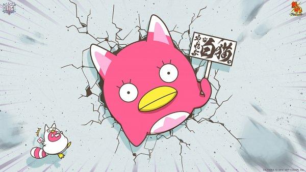 Tags: Anime, Gintama, Shironeko Project, Ko Elizabeth, Motion Blur, Bird Costume, Sign Board, Raccoon Costume, Official Art, Official Wallpaper, Wallpaper