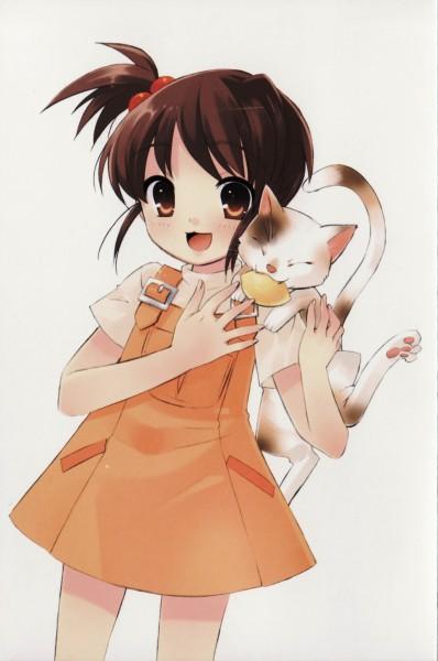 Tags: Anime, Ito Noizi, Suzumiya Haruhi no Yuuutsu, Kyon's Sister, Shamisen (Suzumiya Haruhi), Mobile Wallpaper, Official Art