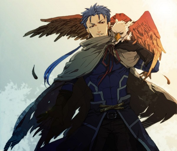Tags: Anime, Pixiv Id 3031851, Fate/stay night, Lancer (Fate/stay night), Eagle, Pixiv