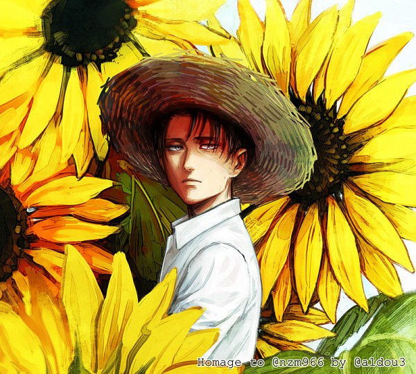 Tags: Anime, Pixiv Id 4344837, Attack on Titan, Levi Ackerman, Fanart, Fanart From Pixiv, Pixiv