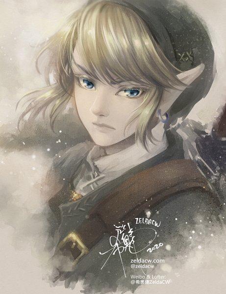 Tags: Anime, Zelda C. Wang, Zelda no Densetsu, Link
