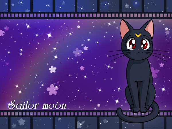 Tags: Anime, Myun, Bishoujo Senshi Sailor Moon, Luna (Sailor Moon), Wallpaper