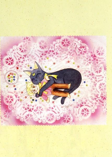 Tags: Anime, Bishoujo Senshi Sailor Moon, Ozora Kakeru, Luna (Sailor Moon), Official Art