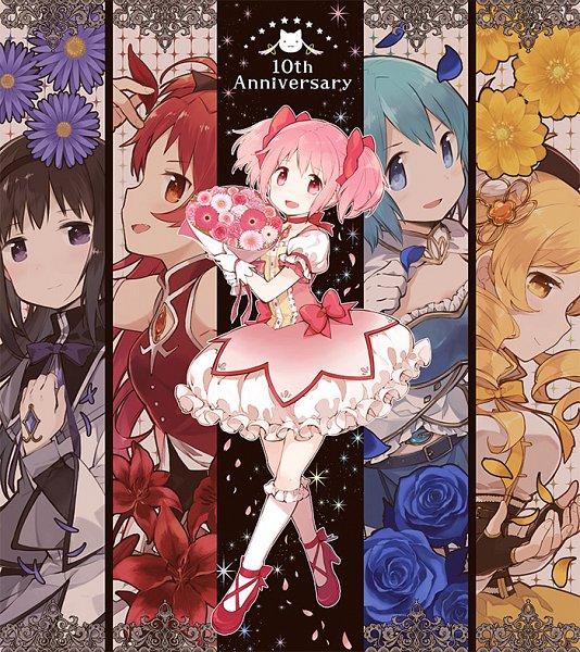 Tags: Anime, Hano, Mahou Shoujo Madoka☆Magica, Akemi Homura, Kyubee, Tomoe Mami, Miki Sayaka, Kaname Madoka, Sakura Kyouko, Gerbera (Flower), Daisy (Flower), Text: Anniversary, Fanart, Magical Girl Madoka Magica