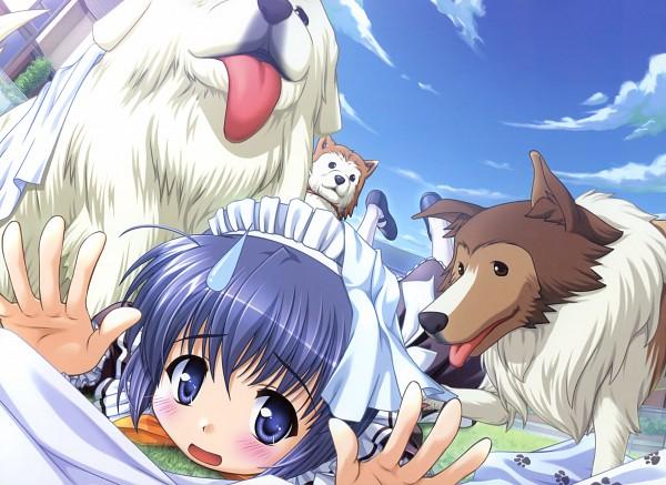 Tags: Anime, Bekkankou, August (Studio), Four Seasons Memorial 2005-2010 Calendar, Yoake Mae yori Ruriiro na, Mia Clementis, Scan, Official Art, Calendar (Source)