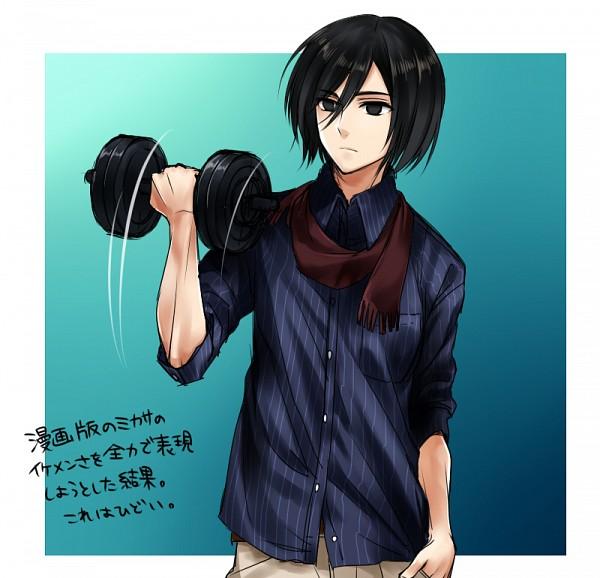 Tags: Anime, Kenao, Shingeki no Kyojin, Mikasa Ackerman, Tomboy, Working Out, Dumbbells, Lifting, Pixiv