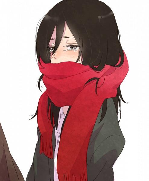 Tags: Anime, Pixiv Id 3310192, Attack on Titan, Mikasa Ackerman, Fanart From Pixiv, PNG Conversion, Pixiv, Fanart