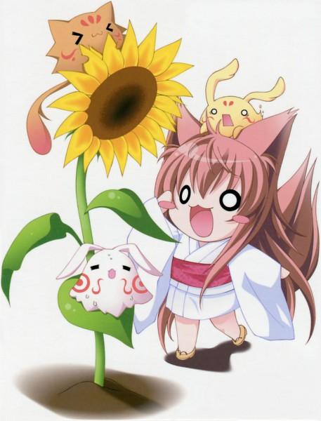 Tags: Anime, Moekibara Fumitake, Lump of Sugar, Tayutama: Kiss on my Deity, Mito Mashiro