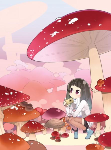 Mushroom - Nature