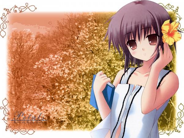 Tags: Anime, Zinno, Suzumiya Haruhi no Yuuutsu, Nagato Yuki