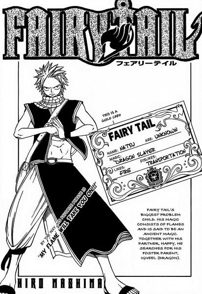 Tags: Anime, Mashima Hiro, FAIRY TAIL, Natsu Dragneel, Chapter Cover, Character Sheet, Scan, Manga Page