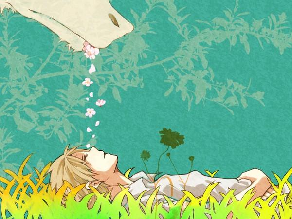 Tags: Anime, Pixiv Id 1431547, Natsume Yuujinchou, Madara, Natsume Takashi, Wallpaper, Fanart, Pixiv, Natsume's Book Of Friends