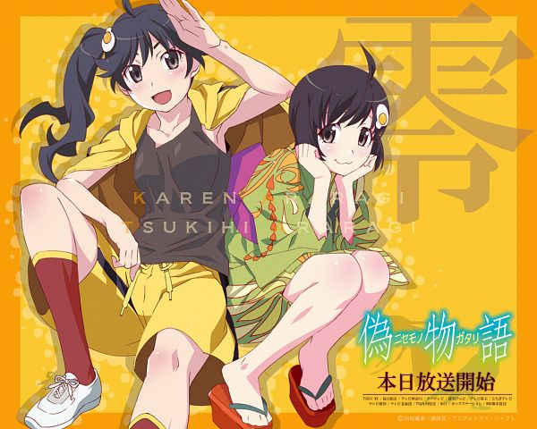 Tags: Anime, Shaft (Studio), Monogatari, Nisemonogatari, Araragi Tsukihi, Araragi Karen, Wallpaper, Official Art