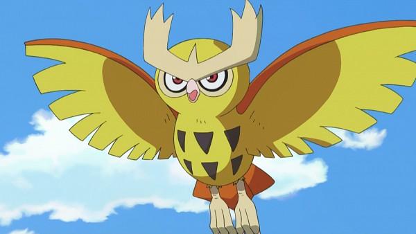 Noctowl - Pokémon