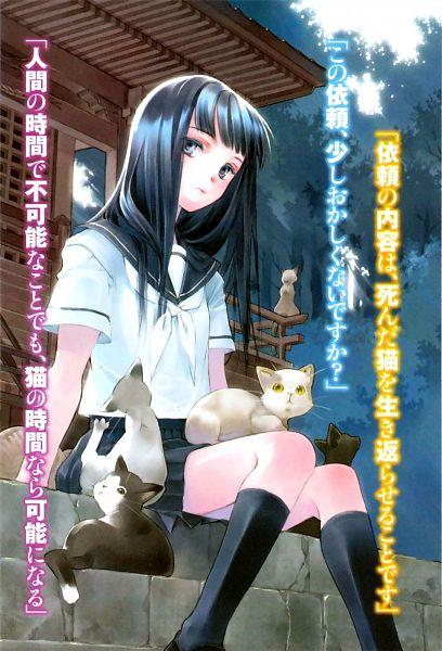 Tags: Anime, Shiina Yuu, Sakurada Reset, Nonoo Seika, Novel Illustration, Official Art, Scan