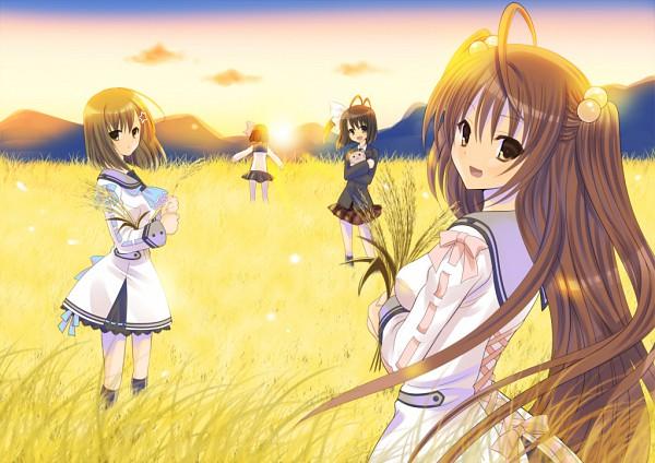 Tags: Anime, Navel (Studio), Oretachi ni Tsubasa wa Nai, Ootori Naru, Haneda Kobato, Tamaizumi Hiyoko, Watari Asuka, Wheat, Fanart, We Without Wings