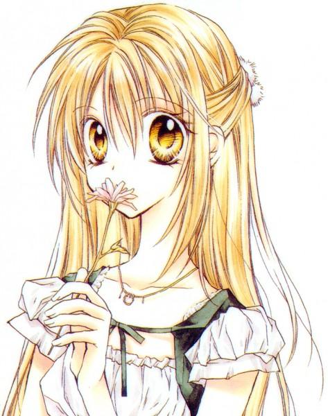 Tags: Anime, Tanemura Arina, Shinshi Doumei Cross, Otomiya Haine, Daisy (Flower), Official Art