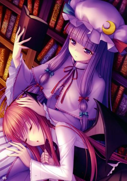 Tags: Anime, Sayori, Eastern Garden 01, Touhou, Patchouli Knowledge, Koakuma, Pixiv, Mobile Wallpaper, Reitaisai 7, Reitaisai, PatcheKoa