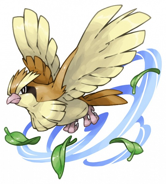 Pidgey - Pokémon