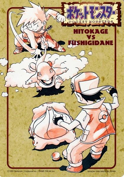 Tags: Anime, Sugimori Ken, Nintendo, Pokémon, Bulbasaur, Green (Pokémon), Red (Pokémon), Charmander, Mobile Wallpaper, Official Art