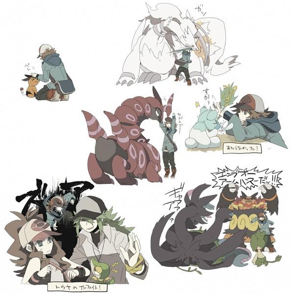 Tags: Anime, Cheavy, Pokémon, Touya (Pokémon), Emboar, N (Pokémon), Cubchoo, Reshiram, Snivy, Touko (Pokémon), Tepig, Pansage, Hydreigon