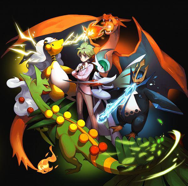 Tags: Anime, Pixiv Id 26684179, Pokémon Gold & Silver, Pokémon Red & Green, Pokémon Ruby & Sapphire, Pokémon Diamond & Pearl, Pokémon, Sceptile, Empoleon, Charizard, Mitsuru (Pokémon), Ampharos, Gallade