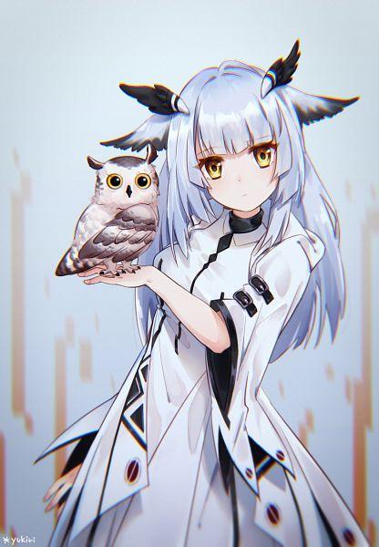 Tags: Anime, Pixiv Id 12897530, Arknights, Ptilopsis