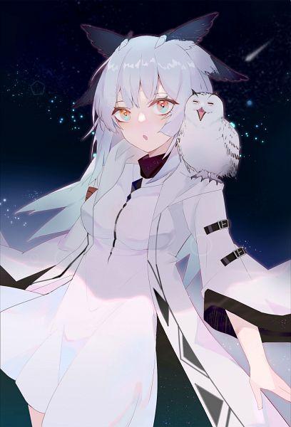 Tags: Anime, Pixiv Id 6950851, Arknights, Ptilopsis