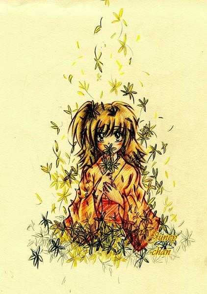 Tags: Anime, InuYasha, Rin (InuYasha)