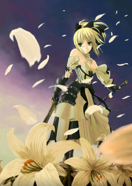 Tags: Anime, Fate/unlimited codes, Saber Lily, Saber (Fate/stay night), Caliburn