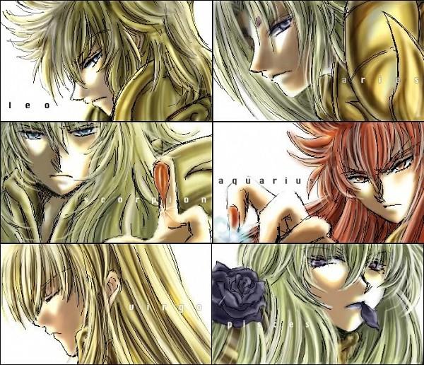 Tags: Anime, Saint Seiya, Aquarius Camus, Scorpio Milo, Leo Aiolia, Pisces Aphrodite, Virgo Shaka, Aries Shion, Black Flower, Gold Saints
