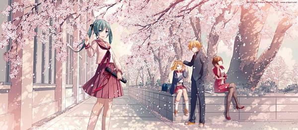 Sakura no Ame (Cherry Blossom Rain)