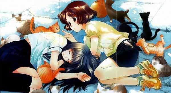 Tags: Anime, Shiina Yuu, Sakurada Reset, Nonoo Seika, Haruki Misora, Novel Illustration, Official Art, Scan, Wallpaper