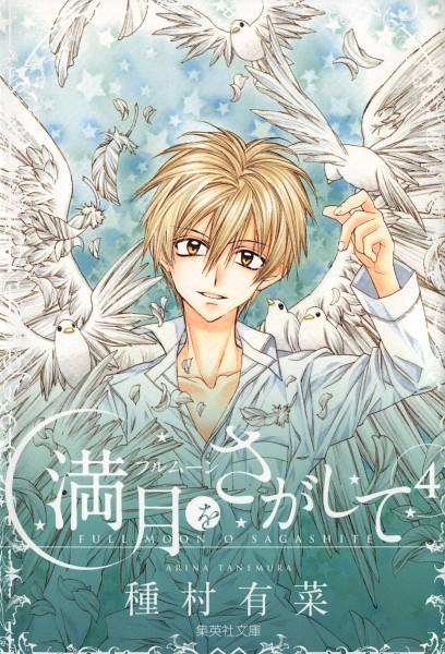 Tags: Anime, Tanemura Arina, Full Moon wo Sagashite, Sakurai Eichi, White Bird, Mobile Wallpaper, Scan, Official Art, Manga Cover