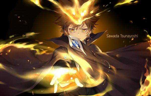 Tags: Anime, Ekita_Kuro, Katekyo Hitman REBORN!, Sawada Tsunayoshi, Dying Will Flame, Pixiv