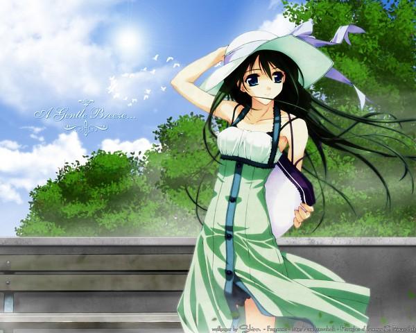 Tags: Anime, Natsuiro No Sunadokei, Serizawa Kaho, Seagull, Wallpaper