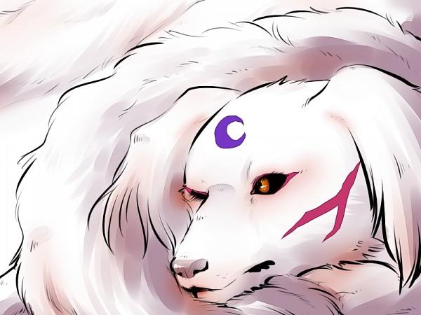 Sesshomaru (Dog) - Sesshoumaru