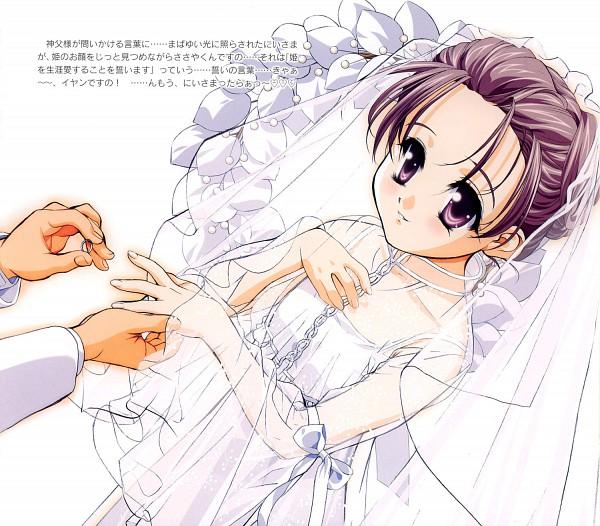 Shirayuki - Sister Princess