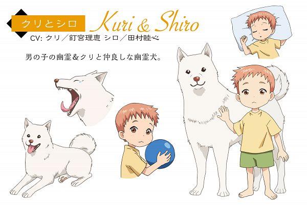 Shiro (Youkai Apato no Yuuga na Nichijou) - Youkai Apato no Yuuga na Nichijou