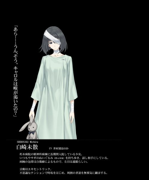 Tags: Anime, Sugina Miki, Innocent Grey, Kara no Shoujo 2, Shirosaki Michiru, Official Character Information, Official Art