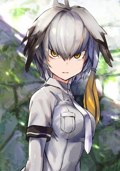 Tags: Anime, Pixiv Id 10773174, Kemono Friends, Shoebill (Kemono Friends)
