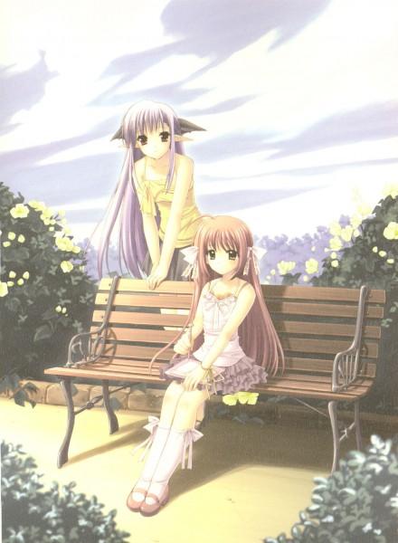 Tags: Anime, Suzuhira Hiro, Nishimata Aoi, Navel (Studio), Shuffle!, Lisianthus Eustoma, Nerine (Shuffle!)