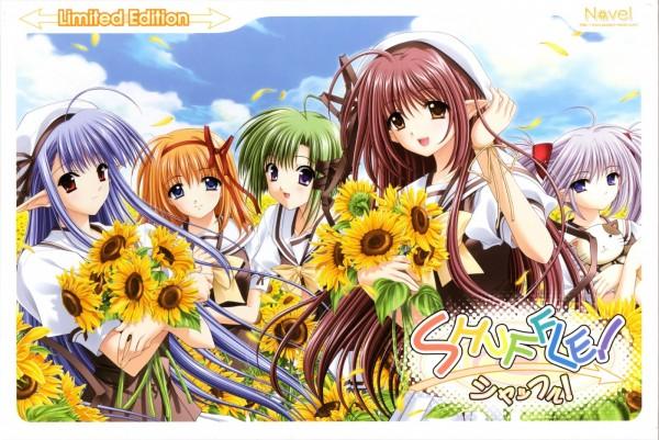 Tags: Anime, Navel (Studio), Shuffle!, Primula (Shuffle!), Lisianthus Eustoma, Nerine (Shuffle!), Shigure Asa, Fuyou Kaede