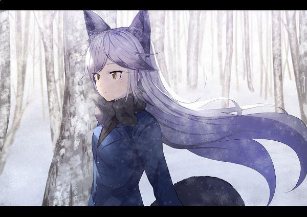 Tags: Anime, Koruse, Kemono Friends, Silver Fox (Kemono Friends), PNG Conversion