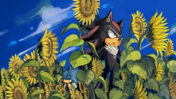 Tags: Anime, Nashico, Sonic the Hedgehog, Sonic the Hedgehog (Character), Shadow the Hedgehog, deviantART, Fanart From DeviantART, Fanart