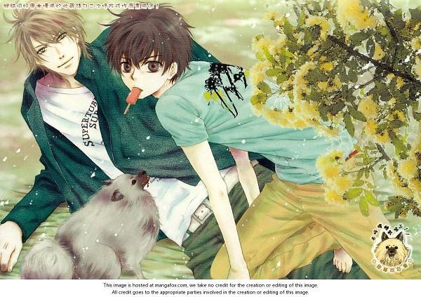 Tags: Anime, Abe Miyuki, Super Lovers, Kaidou Haru, Kaidou Ren, Official Art