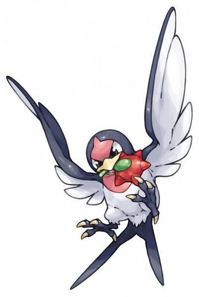 Taillow - Pokémon