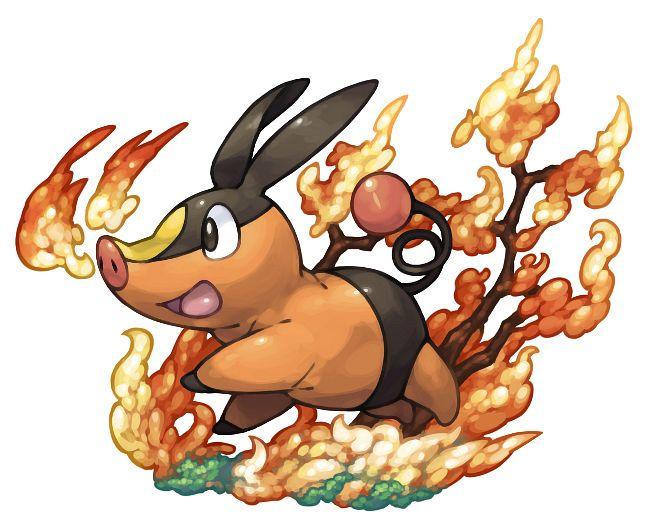 Tepig - Pokémon
