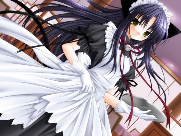 Tags: Anime, Klein (Studio), Pure Pure, Tobari, CG Art